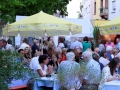 brahmsplatzfest12-platz-large