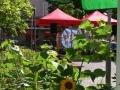 brahmsplatzfest-2013-platz-1-large